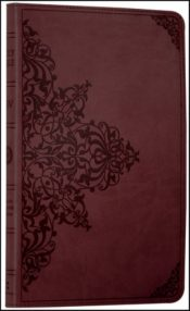 Holy Bible: English Standard Version (ESV) Anglicised Chestnut Ornamental Thinline Edition