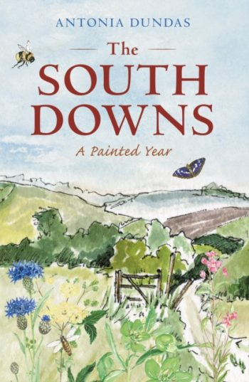 The South Downs : A Painted Year