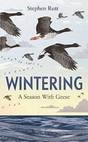 Wintering : A Season With Geese