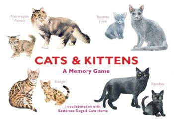 Cats & Kittens : A Memory Game