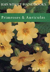 Primroses and Auriculas