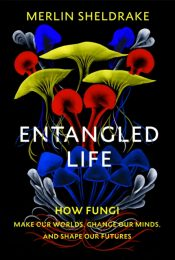 Entangled Life : How Fungi Make Our Worlds, Change Our Minds and Shape Our Futures