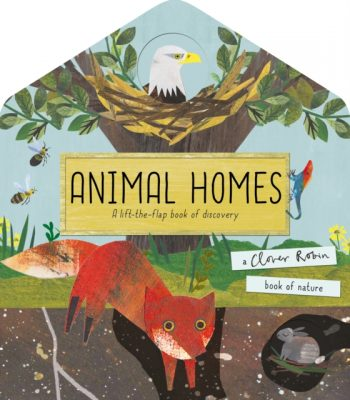Animal Homes : A lift-the-flap book of discovery