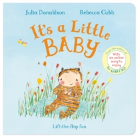 its a little baby by Julia donaldson